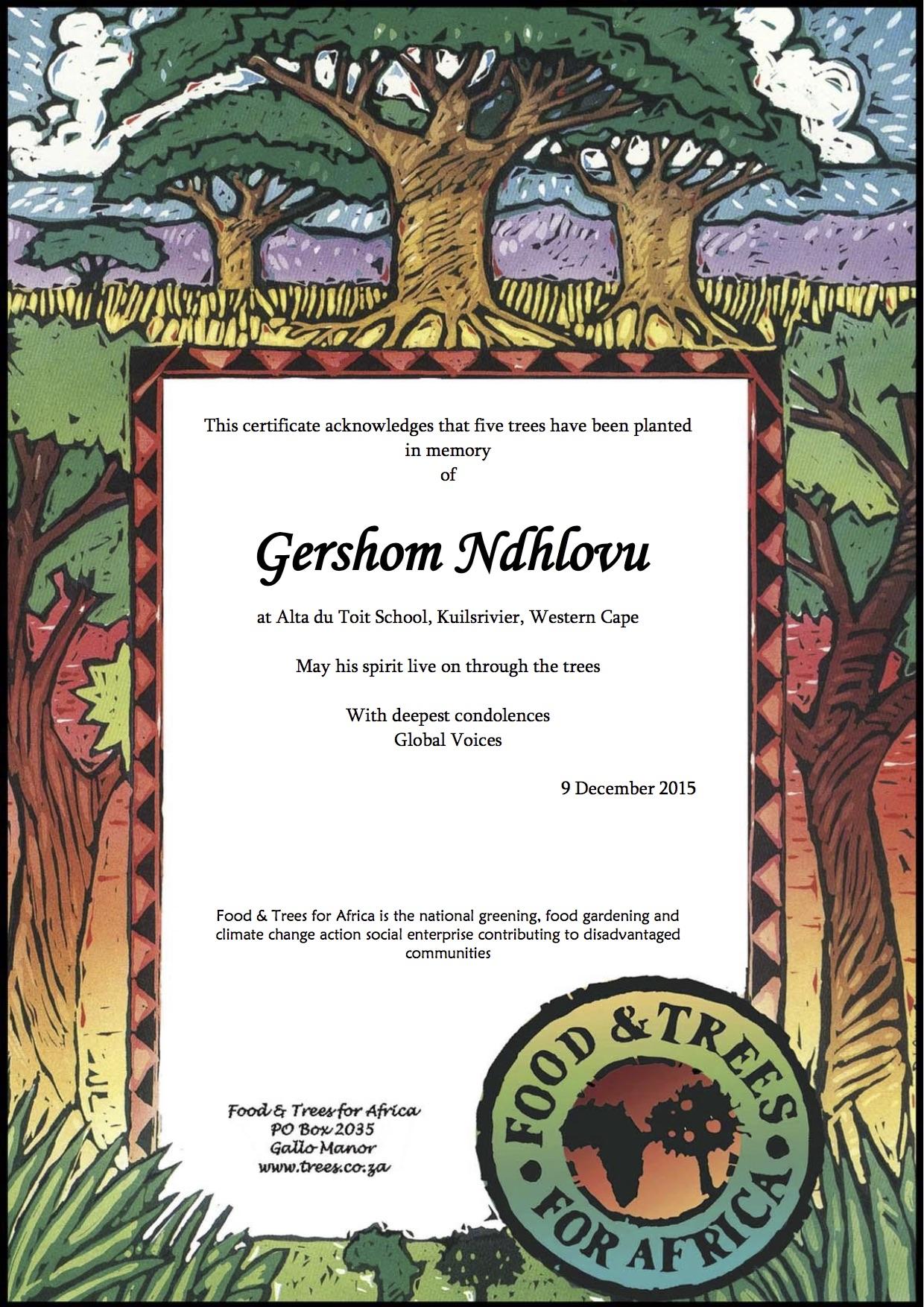 Gershom_memory_trees